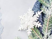 El fondo de la Navidad del invierno con nieve del árbol de abeto ramifica Foto de archivo libre de regalías