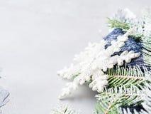 El fondo de la Navidad del invierno con nieve del árbol de abeto ramifica Fotos de archivo