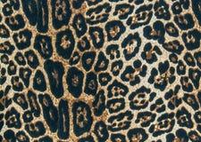 El fondo de la textura de la tela de la impresión rayó el leopardo, esquí animal Imagen de archivo libre de regalías