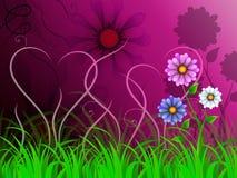 El fondo de las flores muestra el mundo bonito y natural colorido Fotos de archivo libres de regalías