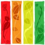 El fondo de las hojas representa la plantilla frondosa y al aire libre Imagenes de archivo