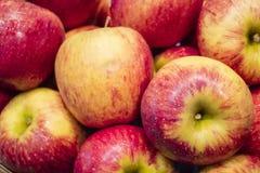 El fondo de las manzanas rojas Fotografía de archivo libre de regalías