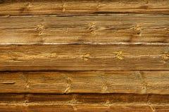 El fondo de madera de la textura, diversos tamaños de gnarls. Foto de archivo libre de regalías