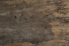 El fondo de madera Textured de Brown aisló fotografía de archivo libre de regalías