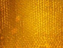 El fondo de oro brillante de los panales de la abeja llenó del sti dulce Fotografía de archivo