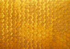 El fondo de oro delicioso de los panales de la abeja llenó del dulce Imágenes de archivo libres de regalías