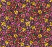 El fondo de rosas Fotografía de archivo libre de regalías