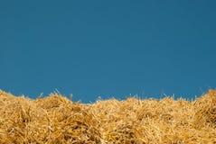 El fondo del cielo azul y de la paja amarilla el paisaje del verano es ideal para el fondo de la inscripción foto de archivo