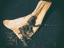 El fondo del diseño del arte abstracto de hojas de té en el palillo de madera de la hierba imagen de archivo libre de regalías
