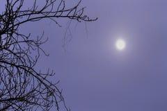 El fondo del eclipse de la nieve Fotos de archivo libres de regalías