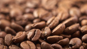 El fondo del grano de café Fotografía de archivo libre de regalías