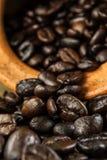 El fondo del grano de café y empaña el primero plano Fotos de archivo libres de regalías