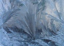 El fondo del invierno Fotos de archivo libres de regalías