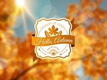 El fondo del otoño con la etiqueta del vintage y el sol emiten Imagenes de archivo