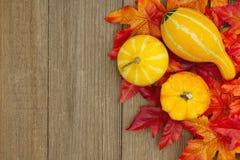 El fondo del otoño con las calabazas y caída se va en la madera resistida Imagenes de archivo
