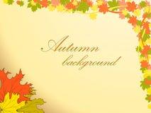 El fondo del otoño con las hojas de arce coloreadas adorna la esquina superior derecha Foto de archivo libre de regalías