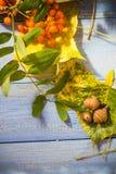 El fondo del otoño sale de la tabla del azul de las frutas Fotografía de archivo libre de regalías