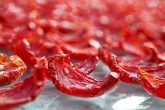 El fondo del primer de tomates rojos corta la sequedad al aire libre en una luz del sol Fotografía de archivo