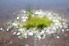 El fondo del sol brillante circunda el bokeh en el agua Fotos de archivo libres de regalías