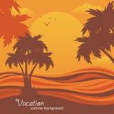 El fondo del verano, vector las palmas tropicales Fotografía de archivo libre de regalías