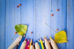 El fondo del vintage coloreó la tabla del azul de las frutas del otoño de los lápices Fotos de archivo