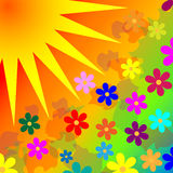 El fondo florece el sol Imagen de archivo