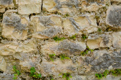 el fondo Gris-marrón, texturiza la albañilería de piedra con la hierba Imagenes de archivo