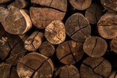El fondo inconsútil de madera con los tocones, árbol corta, los registros, fondo de la ecología Imágenes de archivo libres de regalías