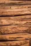 El fondo inconsútil de madera con los tocones, árbol corta, los registros, fondo de la ecología Imagen de archivo