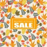 El fondo más grande de la venta del otoño Fotos de archivo libres de regalías
