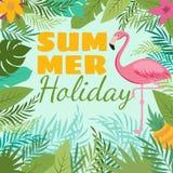El fondo moderno del vector del verano con el flamenco y el trópico plantan la decoración Foto de archivo