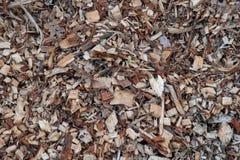 El fondo orgánico del pajote con los pedazos de madera raspa y las hojas foto de archivo
