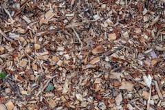 El fondo orgánico del pajote con los pedazos de madera raspa y las hojas imagenes de archivo