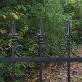 El fondo otoñal forjado de los árboles del hierro labrado del primer decorativo negro de la cerca caido sale de escena oscura gra Imágenes de archivo libres de regalías