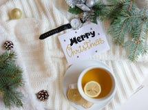 El fondo plano de la endecha de la Navidad y del Año Nuevo con el saludo da la nota de las letras Imagen de archivo libre de regalías