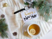 El fondo plano de la endecha de la Navidad y del Año Nuevo con el saludo da la nota de las letras Imagenes de archivo