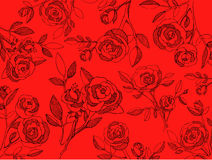 El fondo rojo con las rosas negras da exhausto en un estilo gráfico Imagenes de archivo