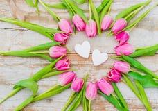 El fondo romántico del día del ` s de la tarjeta del día de San Valentín con las flores rosadas de los tulipanes y dos aman coraz Imágenes de archivo libres de regalías