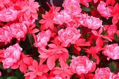 El fondo rosado de la flor Imagen de archivo libre de regalías