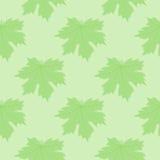 El fondo simétrico hojas del verde Fotos de archivo