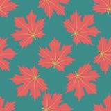 El fondo simétrico Hojas rojas Foto de archivo libre de regalías