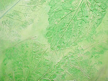 El fondo verde de la textura. fotografía de archivo libre de regalías