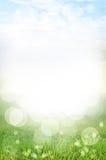 El fondo y la luz abstractos del verde del resorte reflejan