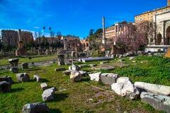 El foro romano Fotografía de archivo
