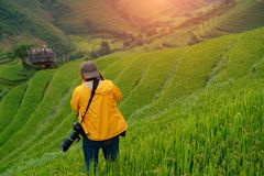 El fotógrafo que lleva un traje amarillo se está colocando Imagenes de archivo