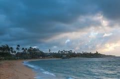 El frente de la playa en Kapaa apuntala en Kauai adonde las palmeras se están sacudiendo en el viento del Pacífico imagenes de archivo