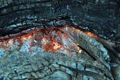 El fuego fotografía de archivo