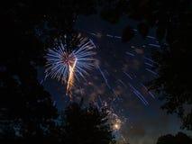 El fuego artificial estalla detrás de árboles fotografía de archivo