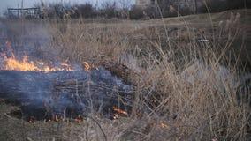 El fuego consume la hierba seca en la orilla del río metrajes