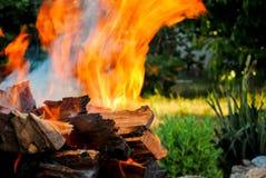 El fuego de la hoguera en la madera abre una sesión una barbacoa en el fondo de la hierba Imágenes de archivo libres de regalías
